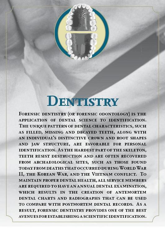 National Museum Of Health And Medicine Nmhm Resolved Advances In Forensic Identification Of U S War Dead Forensic Dentistry